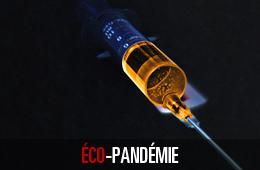 Éco-pandémie